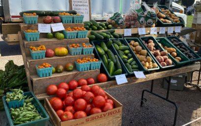 Utilizing Farmer's Markets in Reconstructing Local Economies
