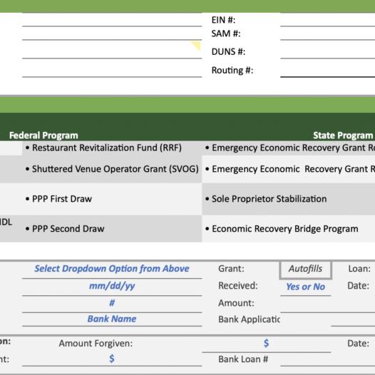 COVID-19 Grant and Loan Dashboard
